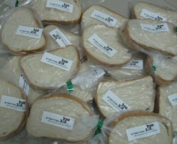 חלוקת סנדוויצ'ים בבתי ספר